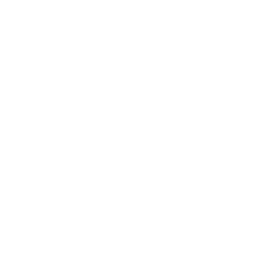 21-Group-logo